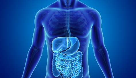 Gastroenterology | The MetroHealth System